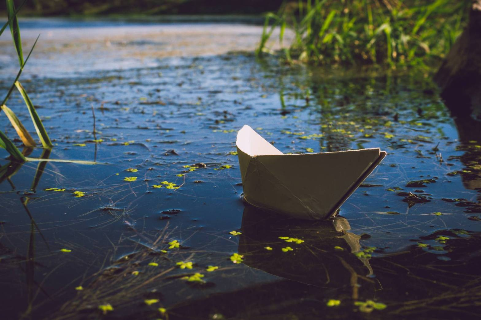 photo of white paper boat on body of water